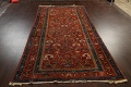 Pre-1900 Antique Vegetable Dye Sultanabad Persian Area Rug 5x10 image 19