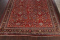 Antique 100% Vegetable Dye Sultanabad Persian Area Rug 12x17 image 8