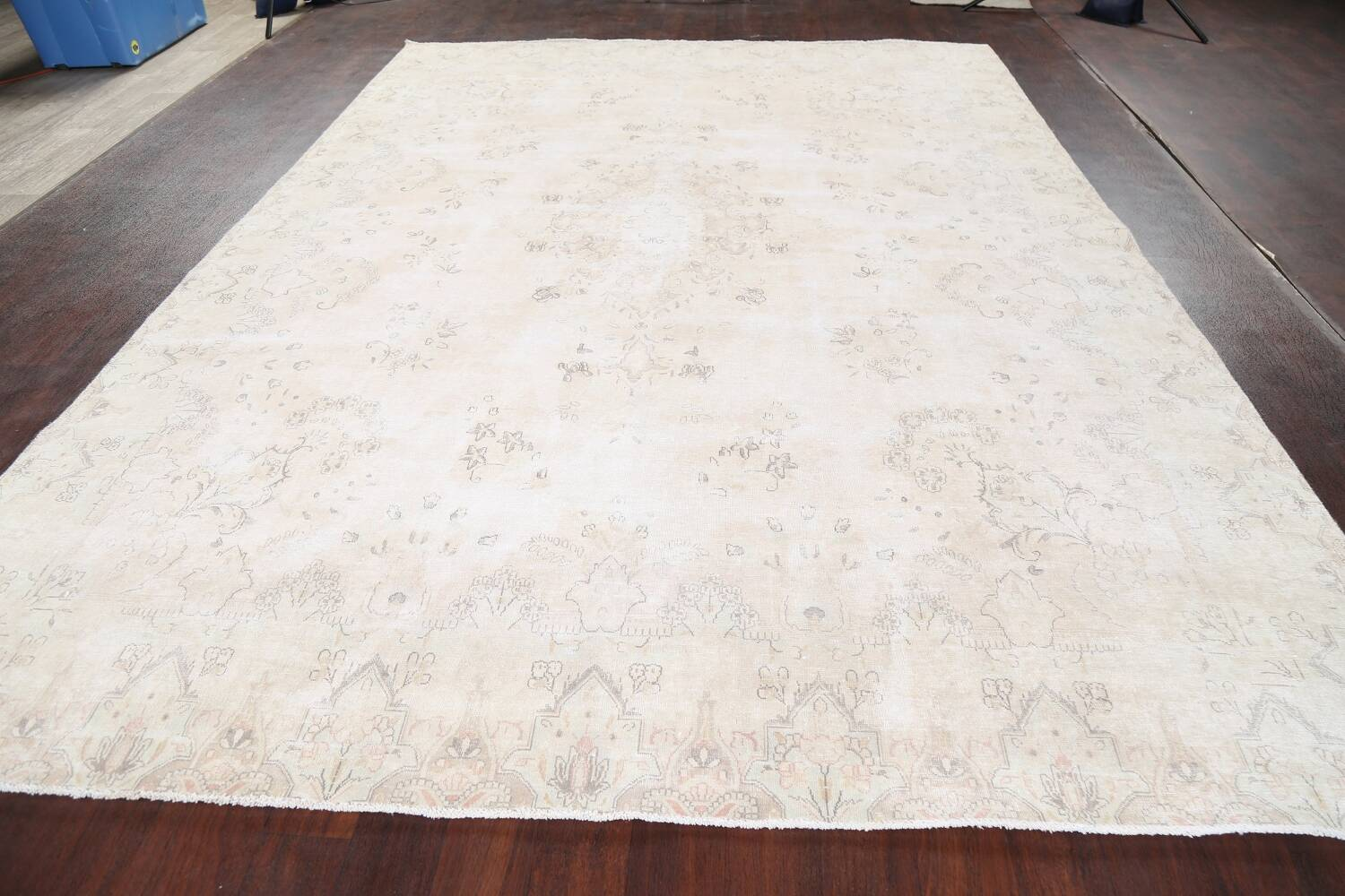 Muted Distressed Kerman Persian Area Rug 8x12 image 16