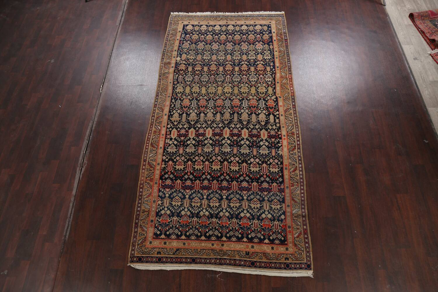 Pre-1900 Antique Vegetable Dye Malayer Persian Area Rug 5x11 image 2