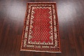 Red Boteh Botemir Persian Area Rug 3x5 image 16