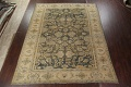 Pre-1900 Antique Vegetable Dye Sultanabad Persian Rug 12x16 image 2