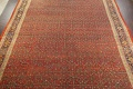 Pre-1900 Antique Vegetable Dye Sultanabad Persian Rug 15x22 image 4