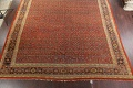Pre-1900 Antique Vegetable Dye Sultanabad Persian Rug 15x22 image 6