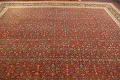 Pre-1900 Antique Vegetable Dye Sultanabad Persian Rug 15x22 image 11