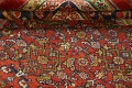 Pre-1900 Antique Vegetable Dye Sultanabad Persian Rug 15x22 image 16