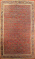 Pre-1900 Antique Vegetable Dye Sultanabad Persian Rug 15x22 image 1